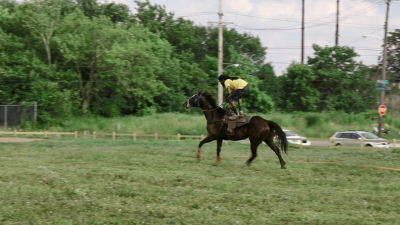 A rider demonstrates his skill by standing on a horse.