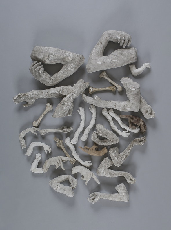 A collection of plaster molds of arms, hands, bones, and other spare body parts, all created by Rodin.