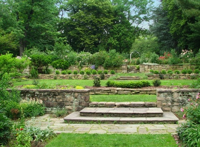 The Barnes Arboretum at Saint Joseph's University